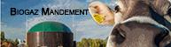 L'union fait la force chez Biogaz Mandement (GE)