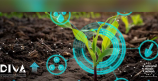 Digital opportunities for the future of Agrifood Forestry and Environment